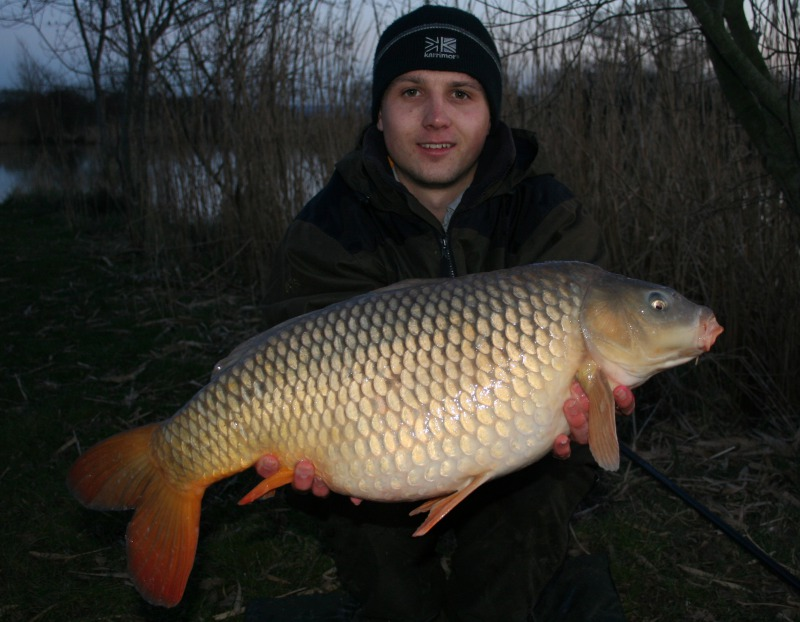 Todber Manor Carp