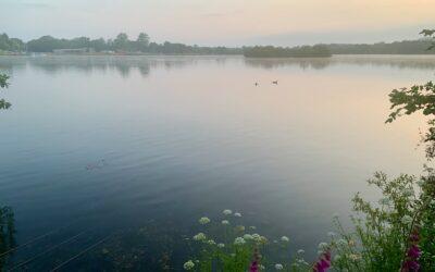 Spinnaker Lake Updates